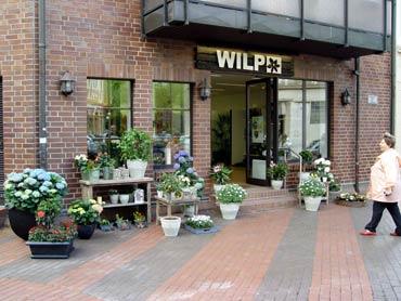 Eröffnung Wilp