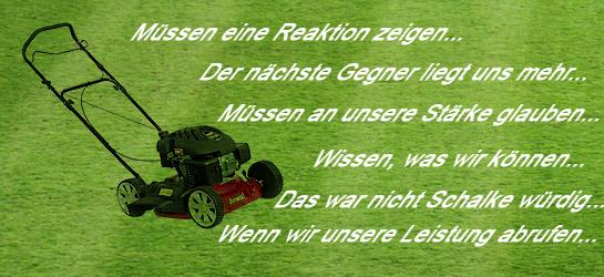 Hört man die Aussagen der Spieler und Verantwortlichen des FC Schalke 04 nach der Pokalblamage in Dresden, so bekommt man schnell den Eindruck von hohlen Phrasen, Klammern an Visionen oder das ominöse Pfeifen im Walde.