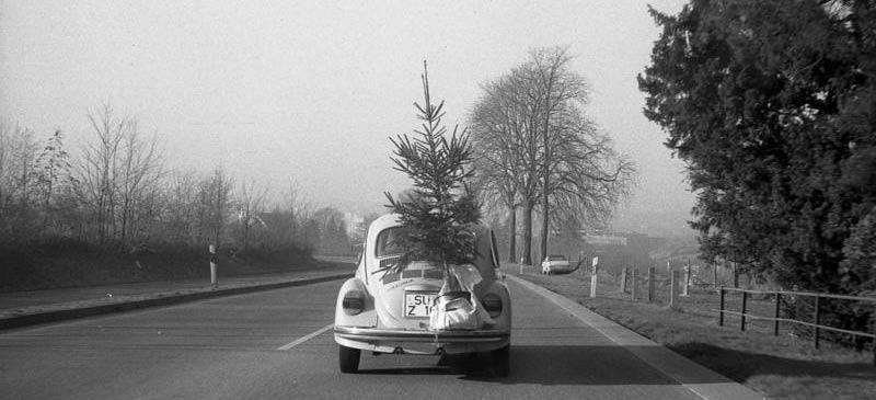 Tannenbaum/ Weihnachtsbaum Abholtermine für das Jahr 2014/2015: Rundgegessen? Oma weg? Weihnachten vorbei?  Machen Sie auch Ihren Weihnachtsbaum bereit zur Abholung!